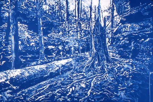 Stephens_Broken-Tree_cyanotype_32x48